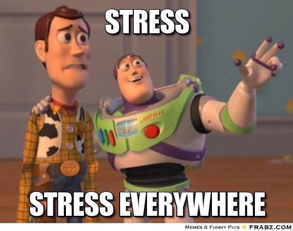 Toy Story Meme: Stress. Stress Everywhere.